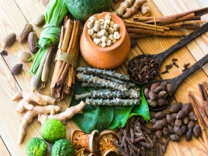 Granny Theraphy Of Nanjaruppaan Herbal Cure Wheezing And Asthma