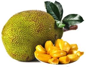 10 Unbelievable Health Benefits Of Jackfruit Leaves