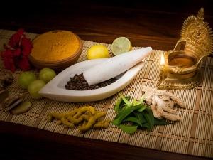 Common Ingredients Used In Ayurvedic Remedies