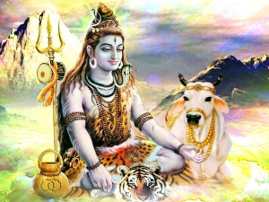 Things Offer Lord Shiva