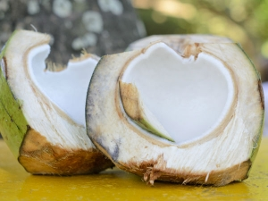 Evidence Based Health Benefits Of Raw Coconut Meat