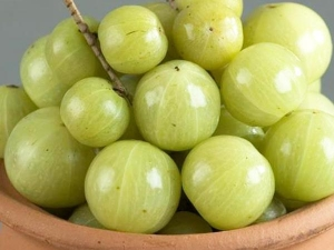 Side Effects Of Amla Which You Are Not Aware Of That