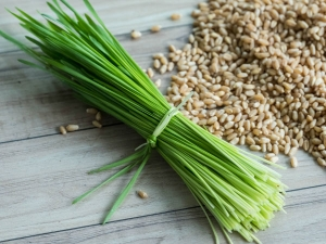 Amazing Health Benefits Wheat Grass