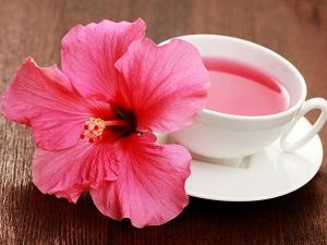 Dry Skin Try This Amazing Hibiscus Moisturiser