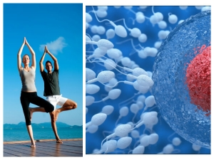 How To Increase Sperm Count By Doing Yoga