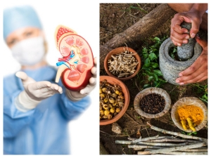 Ayurvedic Remedies To Get Rid Of Kidney Stones