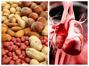 Healthy Nuts Good For Your Heart