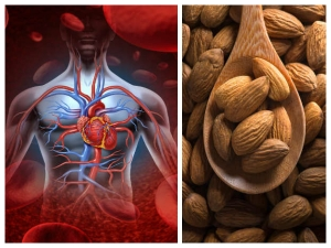 What Will Happen To Your Body When You Eat 4 Almonds A Day