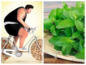 Bizarre Weight Loss Tricks That Actually Works