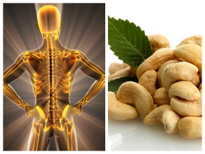 Health Benefits Of Eating Cashews Every Day