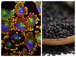 Why You Must Eat Black Sesame Seeds To Prevent Cancer