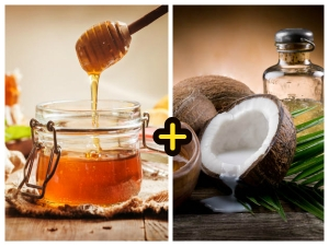 Amazing Benefits Of Raw Honey And Coconut Oil