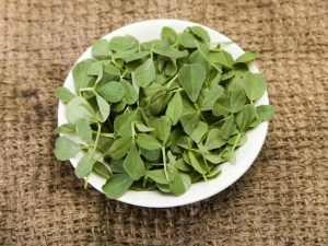 Did You Know How Fenugreek Leaves Can Benefit You Know The Amazing Health Benefits
