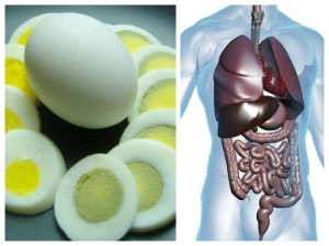 What Will Happen To Your Body If You Start Eating 2 Eggs A Day