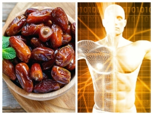 Eating 3 Dates A Daily For 1 Week And See What Will Happens