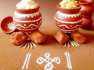 Facts About Why We Called The Name Of Pongal