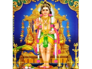 Thaipoosam Special Fevestival Of Lord Muruga