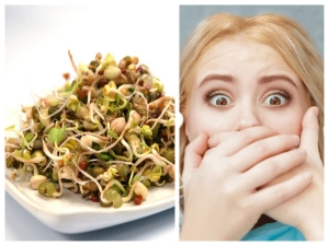 Are Sprouts Safe To Eat