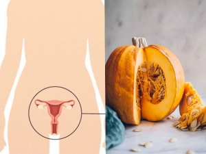 Pumpkin Pulp Protein Can Prevent Vaginal Yeast Infection