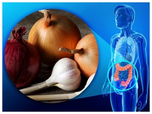 Onions And Garlic May Reduce The Risk Of Colorectal Cancer