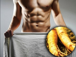 Ginseng Herb For Strong Erection