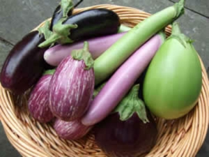 Brinjal Colors And That Medicinal Benefits