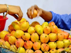 How To Detect A Carbide Free Mangoes