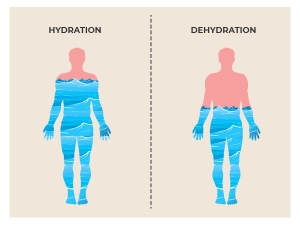 What Happens To Your Body When You Re Dehydrated