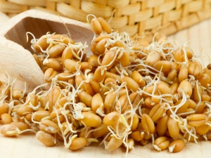 Are Sprouted Grains Healthy