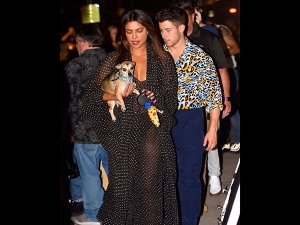 Priyanka Nick Jonas Flaunt And Wow Us With Dots And Tiger