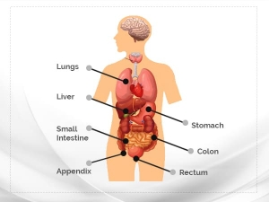 Carcinoid Syndrome Causes Symptoms Diagnosis And Treatmen