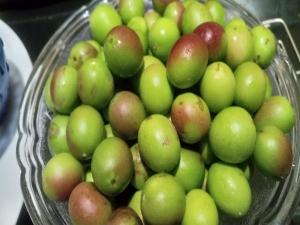 Health Benefits Of Karonda Carissa Carandas Nutrition And Recipe
