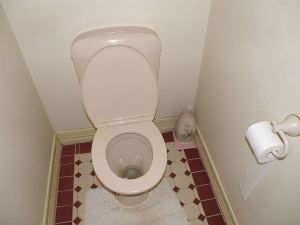 How Bad Is It Not To Use Toilet Seat Covers