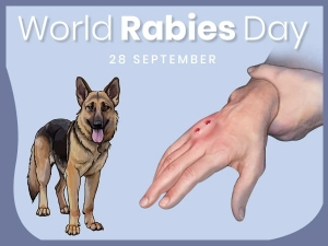 World Rabies Day 2019 If Dog Bites Mind These Seven Things