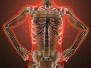 Tips To Bolster Bone Health