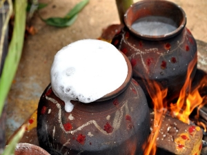 Bhogi Pongal 2021 History Importance And How It Is Celebrated