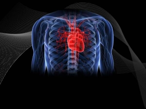 Some Proven Tips To Prevent Heart Palpitations