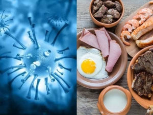 Foods Linked To Novel Coronavirus And The Truth