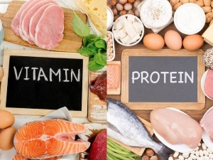 Vitamin Vs Protein Understand The Difference Between These Vital Nutrients