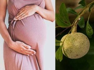 Is Eating Wood Apple Bael Fruit Good During Pregnancy