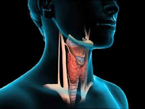 Suffering From Hypothyroidism Here S How Ayurveda Can Help In Managing This Health Concern