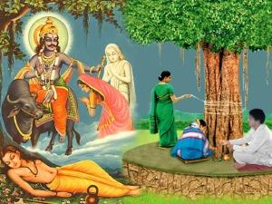 Vat Savitri Vrat 2020 Date Time And Puja Vidhi