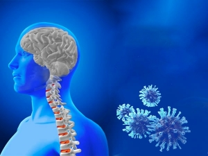 Covid 19 May Affect The Entire Nervous System Of Patients Beware Of These Symptoms