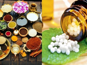 Ayurveda Vs Homeopathy What Is The Difference