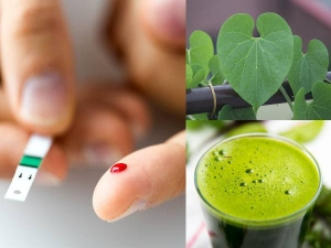 Giloy For Diabetics How Does It Help To Manage Blood Sugar