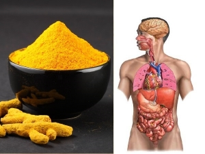 Reasons Why You Should Be Having Turmeric Everyday In Tamil