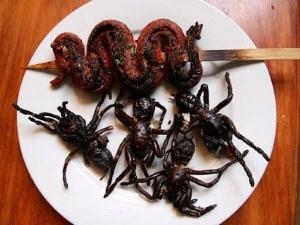 Weird Animals Eaten Around The World