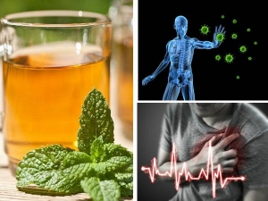 Health Benefits Of Drinking Cucumber Mint Tea In Tamil