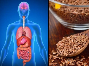 What Happens To Your Body If You Eat Flaxseed Everyday