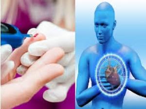 Science Backed Health Benefits Of Yerba Mate